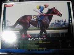horseriders-05l[1].jpg